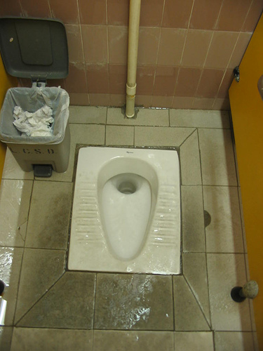 Dreaded squat toilets