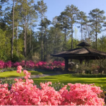 Callaway Gardens in Pine Mountain, GA