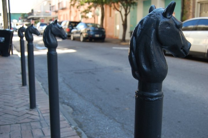 Horse heads in New Orleans