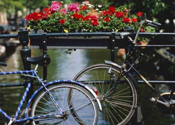 amsterdam_bikes_rex_350