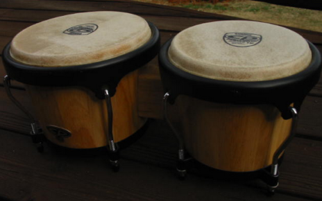 south american bongos