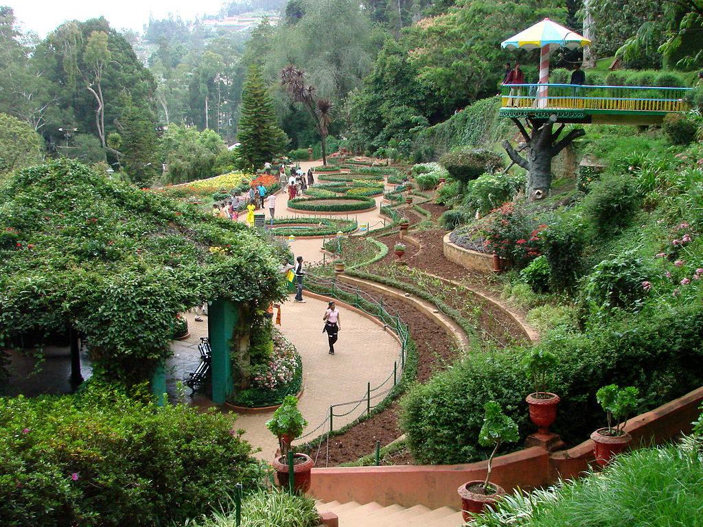 1024px-Botanical_Gardens_-_Ootacamund_(Ooty)_-_India_03-1